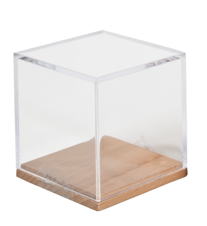 iq test acht w rfel aus holz in plexiglasbox fridolin. Black Bedroom Furniture Sets. Home Design Ideas